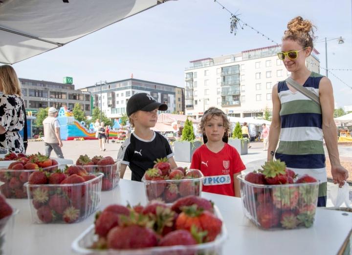 Matias ja Niklas Nyholm sekä äiti Maija Alamäki olivat keskiviikkona kesän ensimmäisillä marjaostoksilla. Poikien suosikkimarja on mansikka.