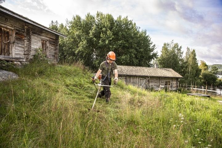 Retkeilijät kiittävät, kun maisemat pysyvät hoidettuina. Marko Parkkinen heinätöissä Kolilla.