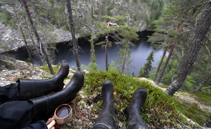 Poliisi etsii Suomessa vuosittain hieman alle tuhatta taajaman ulkopuolella luontoon eksynyttä henkilöä. LEHTIKUVA / Vesa Moilanen