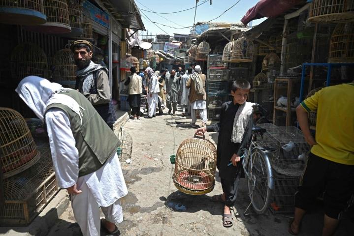 Afganistanin turvallisuustilanteeseen vaikuttaa äärijärjestö Talebanin vahvistuminen kansainvälisten joukkojen vetäydyttyä maasta. Kuva Kabulin lintutorilta. LEHTIKUVA/AFP.