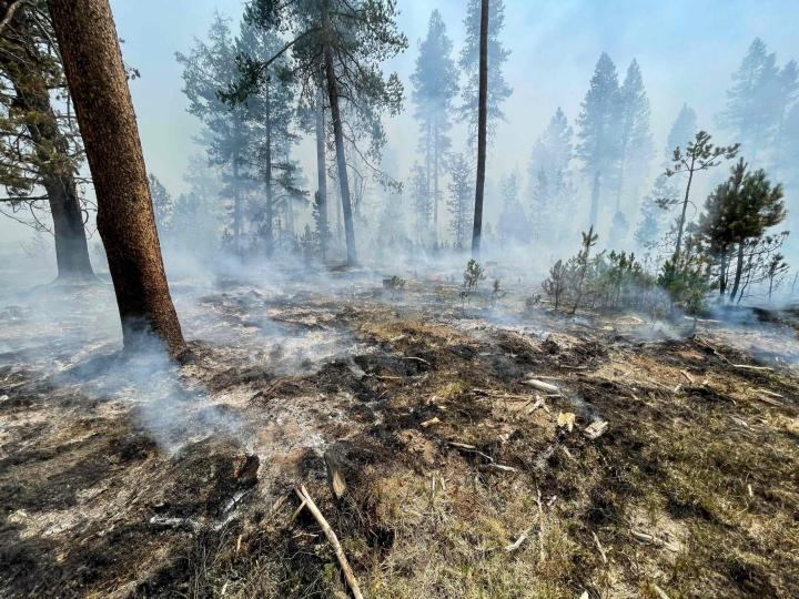 Massiiviset maastopalot ovat vaurioittaneet sekä Kanadan että Yhdysvaltojen länsiosia viime viikkoina. Kuva on Yhdysvaltojen Oregonista läheltä Klamath Fallsin kaupunkia. LEHTIKUVA / AFP