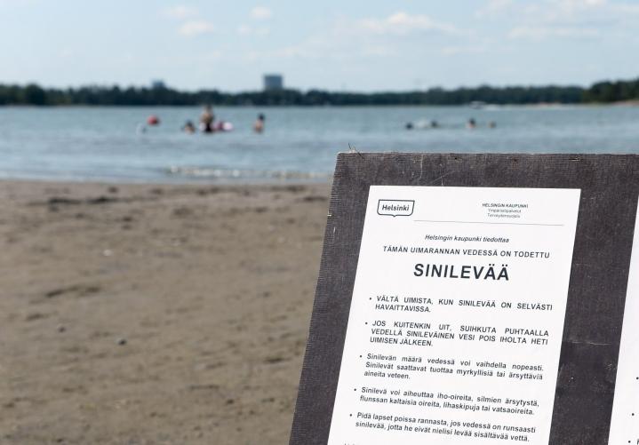 Hietaniemen uimarannalla Helsingissä varoitettiin sinilevästä alkuviikosta. LEHTIKUVA / MIKKO STIG