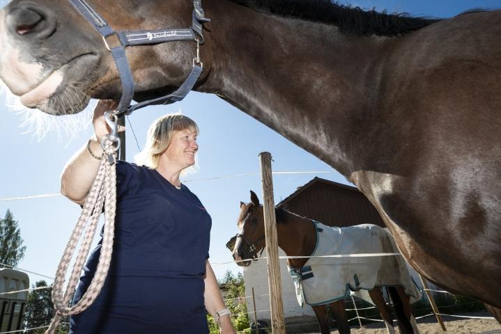 Hevoset ovat Suski Fagerströmin mukaan peili sille, millainen on ihmisenä.