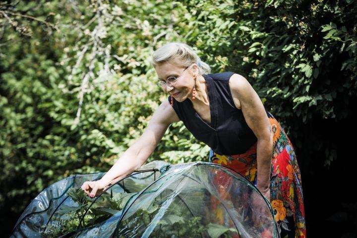 Raisa Cacciatore kasvattaa tänä kesänä juureksia, yrttejä ja salaatteja kolmessa laatikossa pihallaan Kurttilassa.