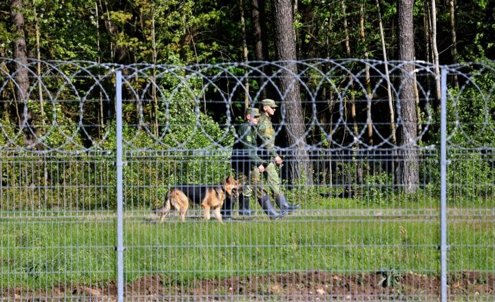 Liettuaan on tullut suuri määrä siirtolaisia Valko-Venäjän kautta. Kuvassa valkovenäläiset vartijat partioimassa raja-aidan takana. Lehtikuva/AFP