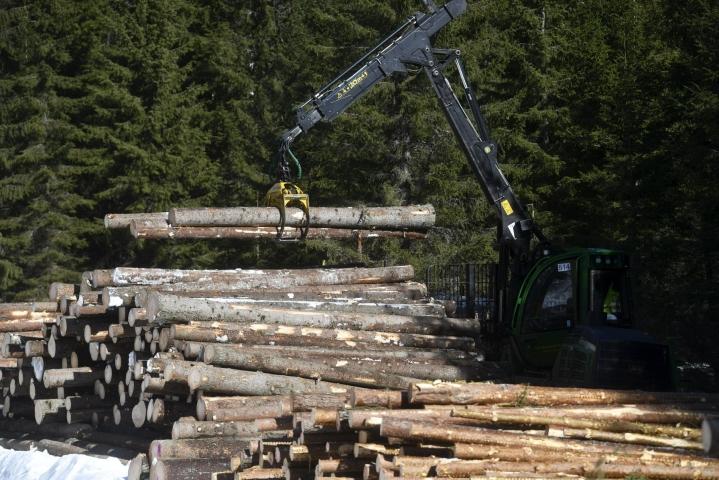 Fossiilisista energialähteistä luovuttaessa tarvitaan muita tapoja tuottaa energiaa. Työ- ja elinkeinoministeriön mukaan Suomessa esimerkiksi turve ja kivihiili ovat korvautumassa merkittäviltä osin metsähakkeella ja muilla biomassajakeilla. LEHTIKUVA / Vesa Moilanen