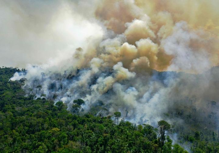 Amazonin sademetsä on maailman suurin sademetsä. Kuva viime vuoden elokuulta. LEHTKUVA/AFP