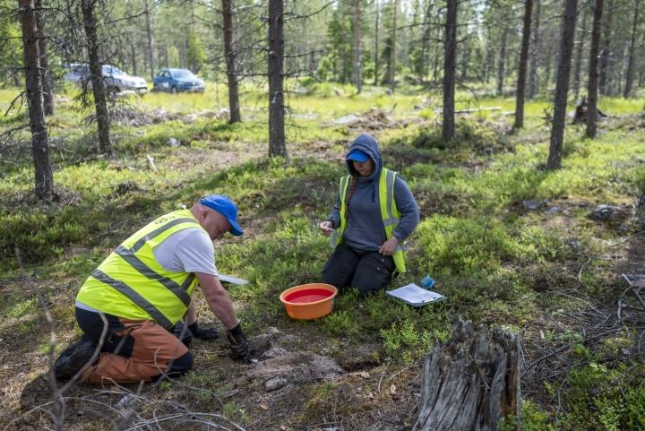 Latitude 66 Cobalt -yrityksen Arto Tiermas ja Tiia Piittinen ottivat maaperänäytettä Misin alueella Kemijärvellä kesäkuussa. LEHTIKUVA / OTTO PONTO
