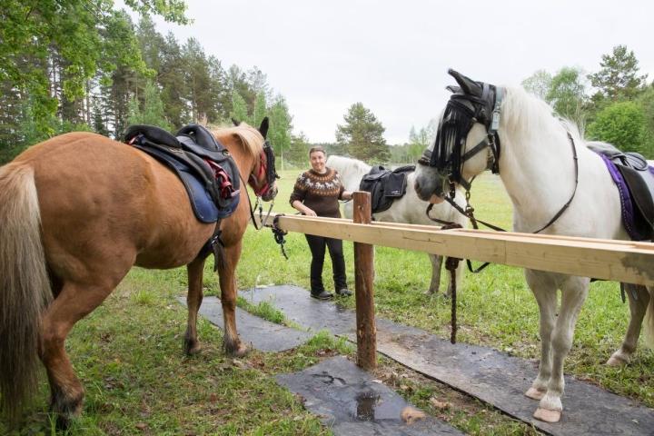 Heiskalan Hoppalan yrittäjä Helena Heiskanen yhdistää hyvinvointitalliyrittäjänä osaamistaan sosiaali-, terveys- ja hevosalalta. Arkistokuva.