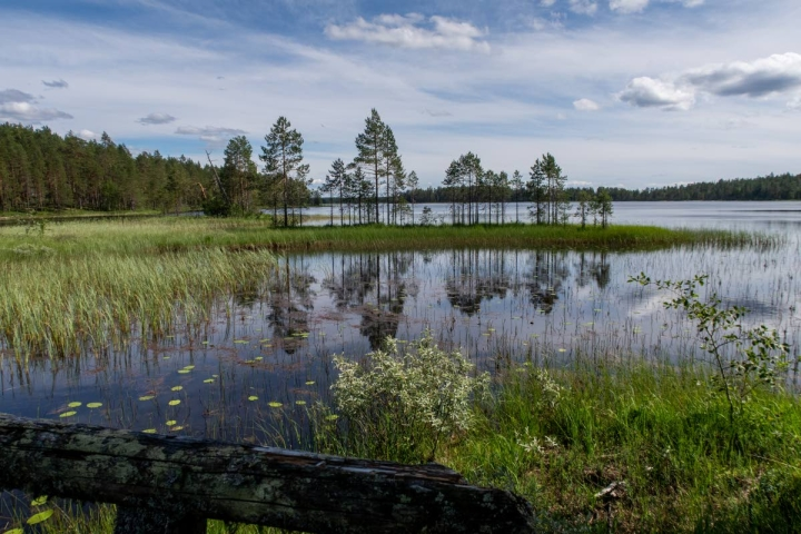 Aittoniemen sillalta aukeaa maalauksellinen erämaajärven maisema.