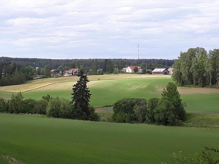 Kyselyn mukaan suomalaisista noin kolmannes haluaisi elää maaseudulla. Tällä hetkellä siellä elää noin viidennes.