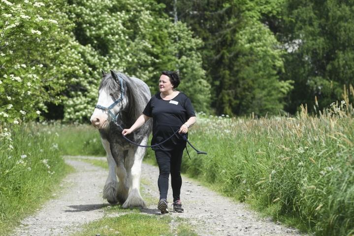 Kati Lahden mielestä hevoset ovat lumoavia.