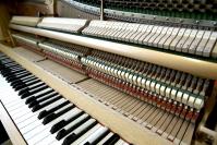 Marko Mustosen Chopin-kokonaisuus oli enemmän kuin osiensa summa