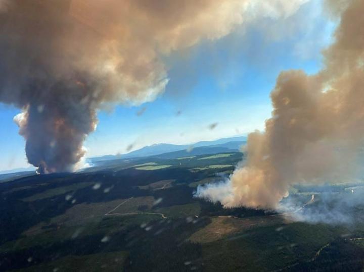 Paloihin on vaikuttanut kuumuus ja kuivuus. LEHTIKUVA/AFP