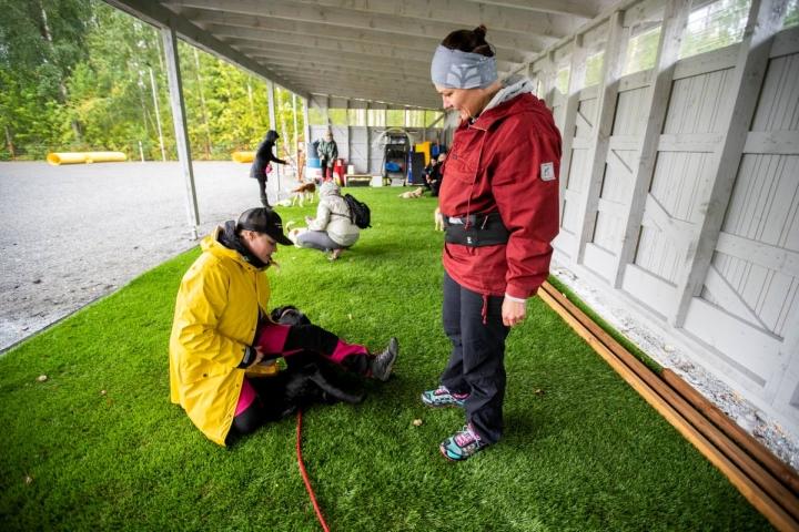 Koirakoulu Napakan yrittäjä Niina Leinonen (vas.) näyttää Seita Romppaselle ja Pulmu-koiralle, kuinka maahanmenoa voi harjoitella.