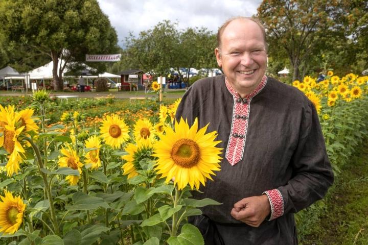 Kukkapelto sai alkunsa jo vuonna 2006. Auringonkukat ovat yksiä tapahtumaa järjestävän Markku Halosen suosikkeja.