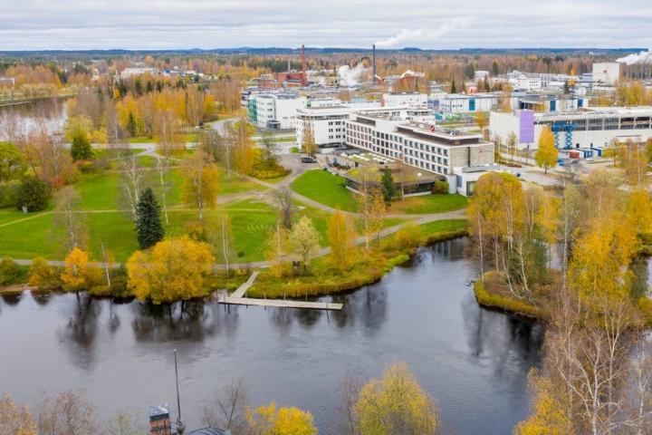 Puiston paikaksi on esitetty muun muassa Sirkkalan puistoa.