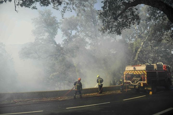Maastopalo oli tiistaiaamuun mennessä tuhonnut yli 3 500 hehtaaria metsää ja pensaikkoa. LEHTIKUVA/AFP