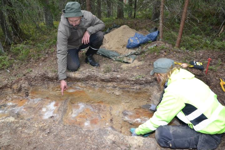 Arkeologit Ville Laakso (vas.) ja Jasse Tiilikkala tutkivat koekuoppaa, jossa ulommaisen puolustusvallin hirsivarustuksen jäännökset erottuvat.