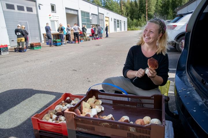 Tiina Nesterinen ei itse pidä sienistä, mutta kerää niitä vuosittain.