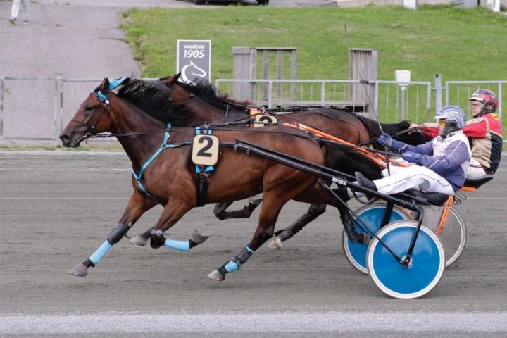 Jani Ruotsalainen ohjasti Tazerin Linnunlahden ravien seitsemännen lähdön voittoon.