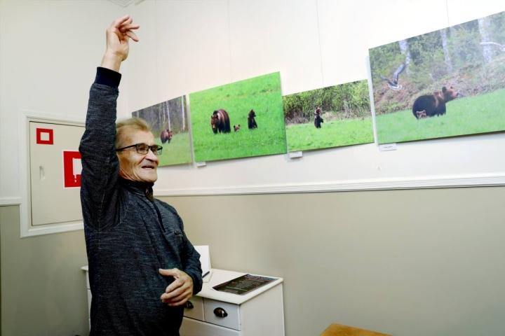 Näyttelyn valokuvat on kuvattu viimeisen viiden vuoden aikana. Kuvassa Matti Eskelinen näyttää kuinka hanhet lähtivät lentoon karhun leikin tieltä.