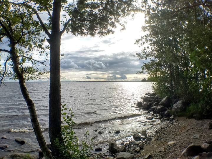 Orivesi-Pyhäselän vedenkorkeus oli elokuussa keskimääräisen korkealla.