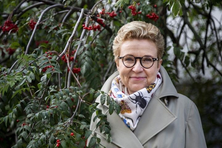 """""""Kirjaa aloittaessa pitää olla onnellinen amnesia, ettei karmeinta vaihetta muista"""", sanoo kuopiolaislähtöinen kirjailija Sirpa Kähkönen."""
