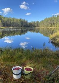 Blogi: Syyskuun sää jatkuu normaalia viileämpänä - vuosi sitten selvästi keskimääräistä lämpimämpää