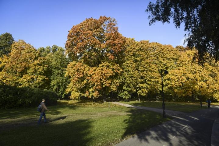 Päivän korkeimmat lämpötilat mitattiin Utsjoen Nuorgamissa. Viime päivinä Suomea on hellinyt lämmin ja aurinkoinen sää. LEHTIKUVA / Emmi Korhonen