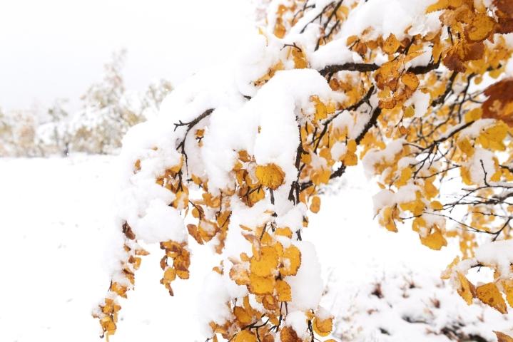 Lapissa räntää ja lunta voi sadella paikoin vielä keskiviikkona. LEHTIKUVA / Roni Rekomaa