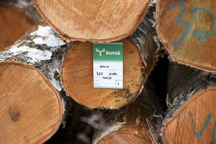 Metsä Groupin mukaan uuden tehtaan suorat työllisyysvaikutukset olisivat noin 140 uutta työpaikkaa. LEHTIKUVA / HEIKKI SAUKKOMAA