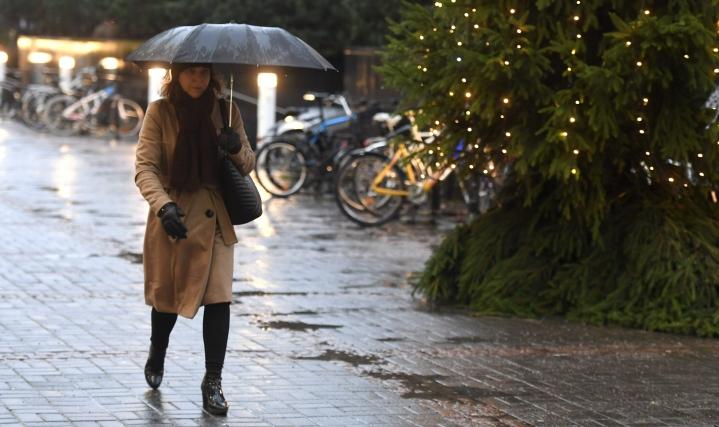 Ilmastonmuutos näkyy muun muassa vähälumisina talvina.
