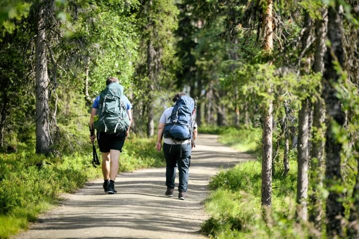 Kansallispuistoihin tehtiin tänä vuonna heinäkuun loppuun mennessä 2,5 miljoonaa vierailua. LEHTIKUVA / AKU HÄYRYNEN