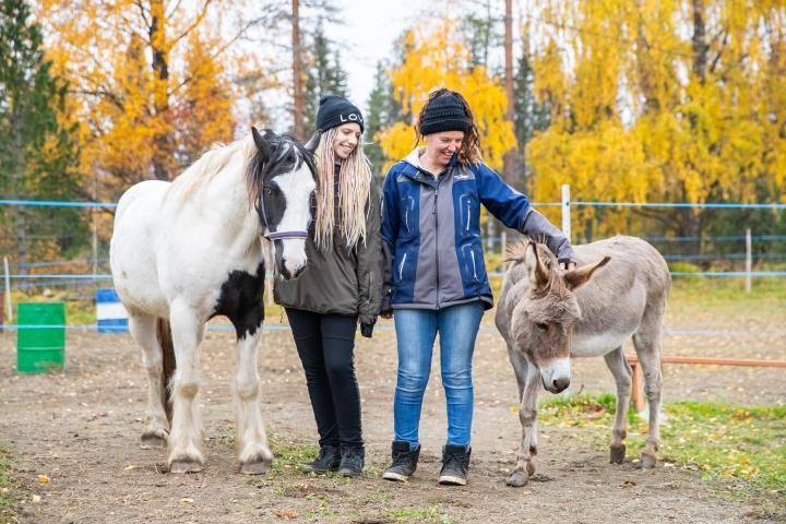 Kovia kokenut Buckley-hevonen, Liv Noack (vas.), Anka Mahrholz ja Hannes-aasi asuvat muutaman kilometrin päässä Kolinportista Juuassa.