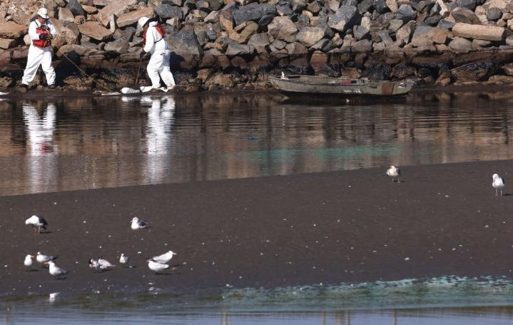 200000 asukkaan Huntington Beachin kaupungin rannikolle on rantautunut suuria määriä kuolleita lintuja ja kaloja. LEHTIKUVA / AFP