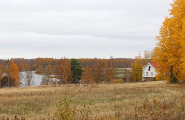 Karhunpään maisemissa viihtyi aikoinaan Elias Lönnrotkin.