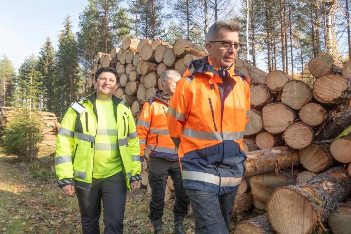 Mika Lappalainen (edessä) ja Harri Välimäki kävivät torstaina Marina Sharapovan kanssa puun lanssipaikalla ja myös hakkuuaukolla.
