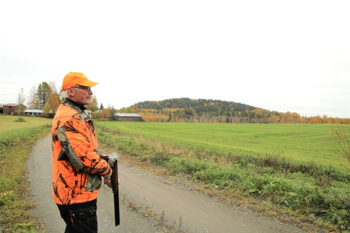 Pekka Kunnas on juuri ampunut ilmaan laukauksia saadakseen valkoposkihanhet lähtemään pellolta. Hän on Luonnonvarakeskuksen tutkimuksessa auttavia metsästäjiä.