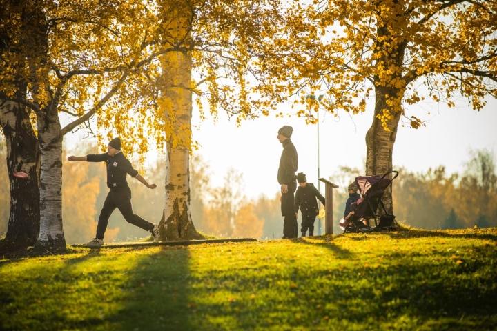 Joensuun Kirkkopuiston frisbeegolfrataan saattaa tulla muutoksia tulevina vuosina.