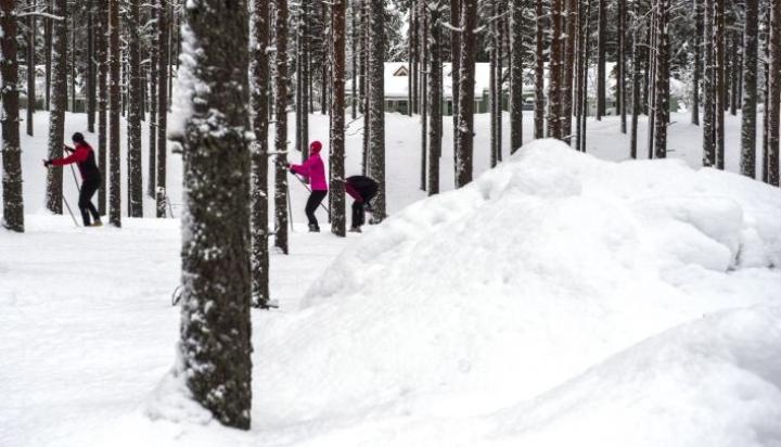 Nuorten MM-hiihdot alkavat tiistaina Sotkamon Vuokatissa. Kuva Vuokatista vuoden 2017 lopulta. LEHTIKUVA / Kimmo Rauatmaa