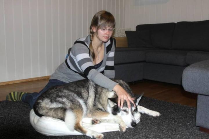 Tanja Kalilainen hoitaa Nikon kalloa.