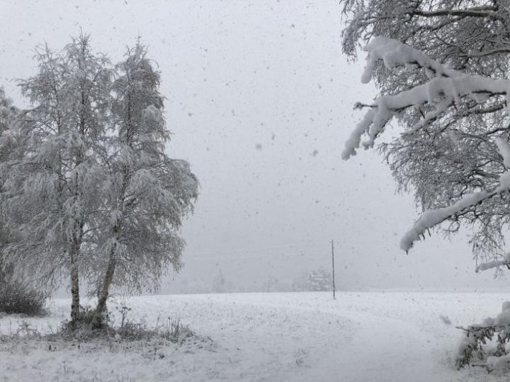 Lunta satoi sakeasti myös Alavudella Etelä-Pohjanmaalla. LEHTIKUVA / Minna Pulli