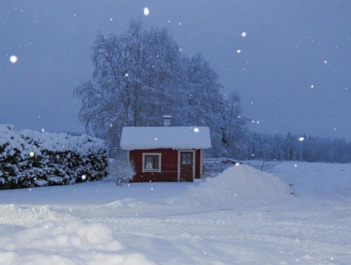 Maija Savolaisen pihalla Nurmeksen Saramossa oli tiistaiaamuna lunta noin 30 senttiä.