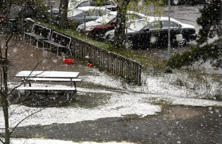Sateita eri olomuodoissa saadaan maanantaina laajalti koko maassa. Espoon Suvelassa sade tuli lumena. LEHTIKUVA / Heikki Saukkomaa