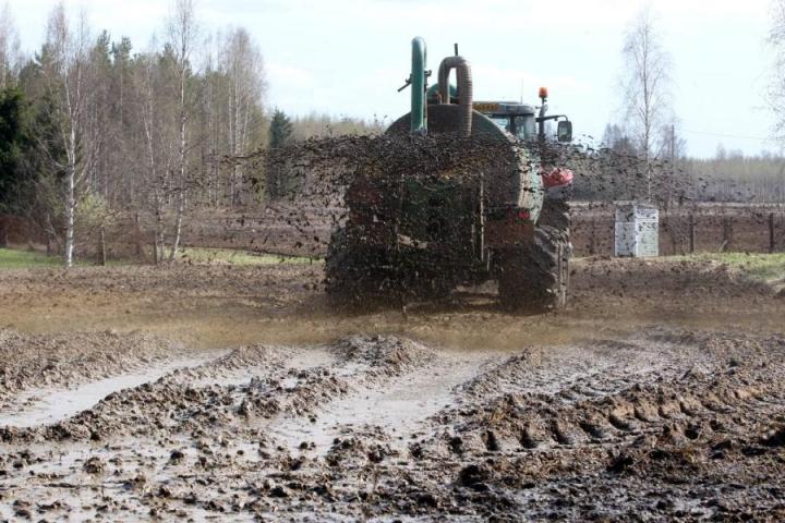 Pilkossa pellolle levitetyn lietelannan haju leijaili torstaina Joensuun kaupunkialueille asti. Arkistokuva.