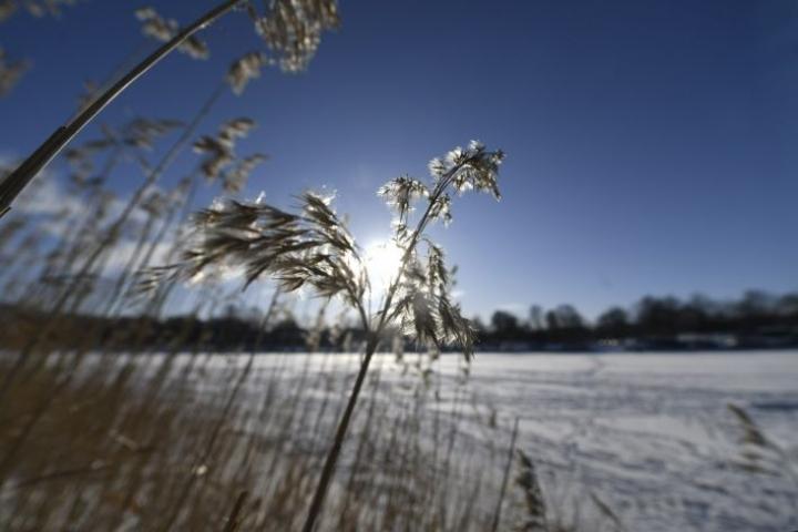 Ensi viikon puolivälissä on luvassa melko kylmää ja aurinkoista säätä. LEHTIKUVA / Vesa Moilanen