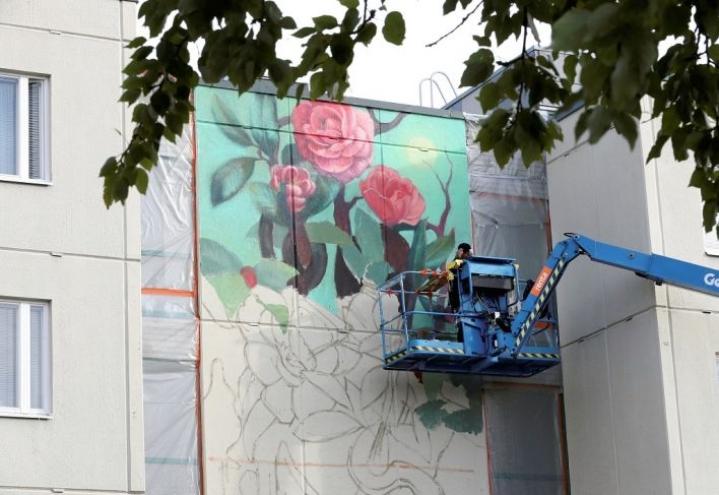Joensuuhun on taiteiltu seinämaalauksia viime vuosina. Arkistokuva on vuodelta 2018.