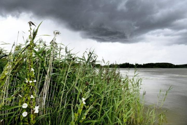 Viikko alkaa epävakaisena, mutta sateet väistyvät tiistaista lähtien. LEHTIKUVA / Heikki Saukkomaa