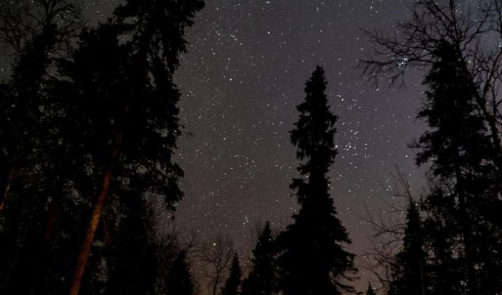 Toivoa tähdenlentojen bongaamiselle kuitenkin vielä jää, sillä meteoreja näkyy myös lähiöinä. Lehtikuva / Jussi Nukari